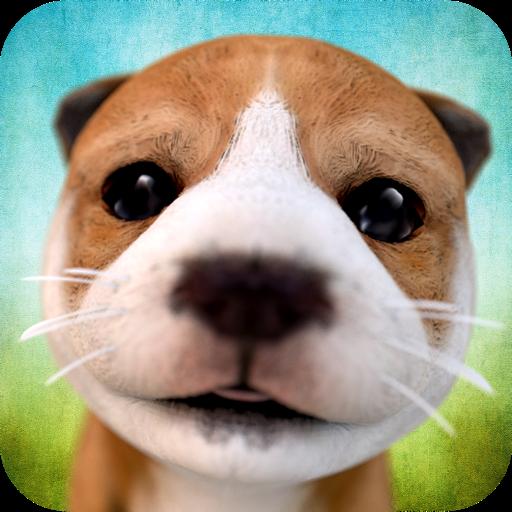 Swift Apps LLC avatar image