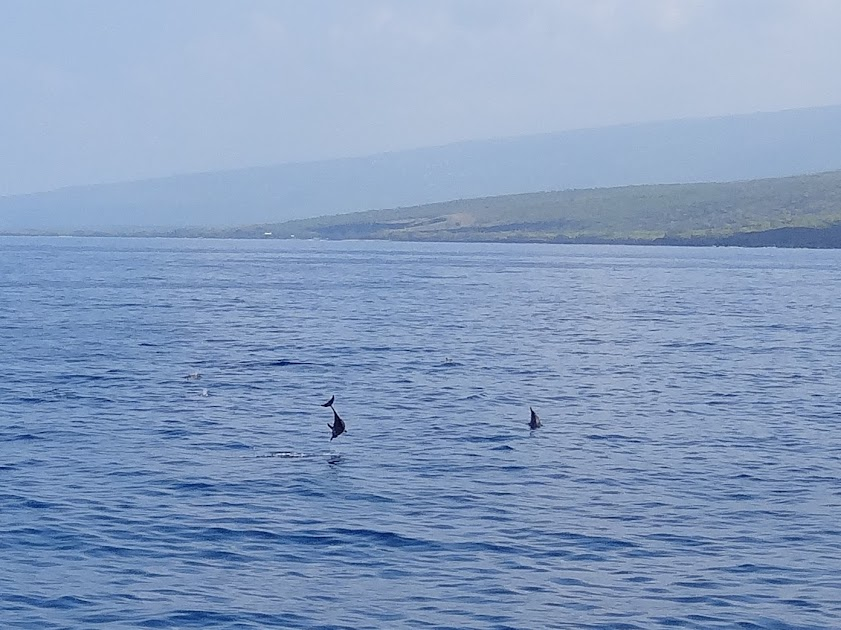 Between Dives on The Kona Aggressor II