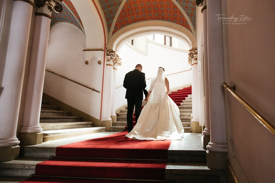 Wedding photographer Zoli Tarnavölgyi (tarnafoto). Photo of 03.03.2019