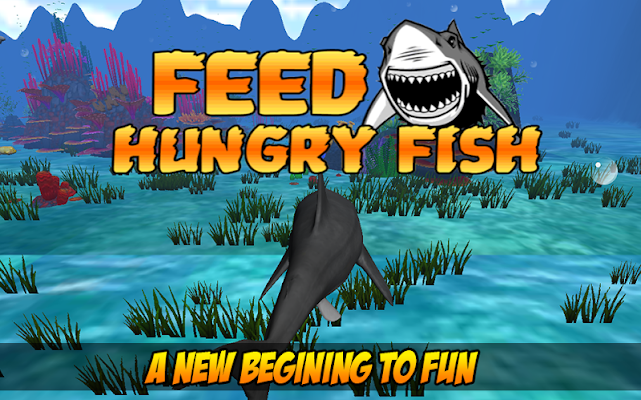 Feed Hungry Fish 3D - screenshot