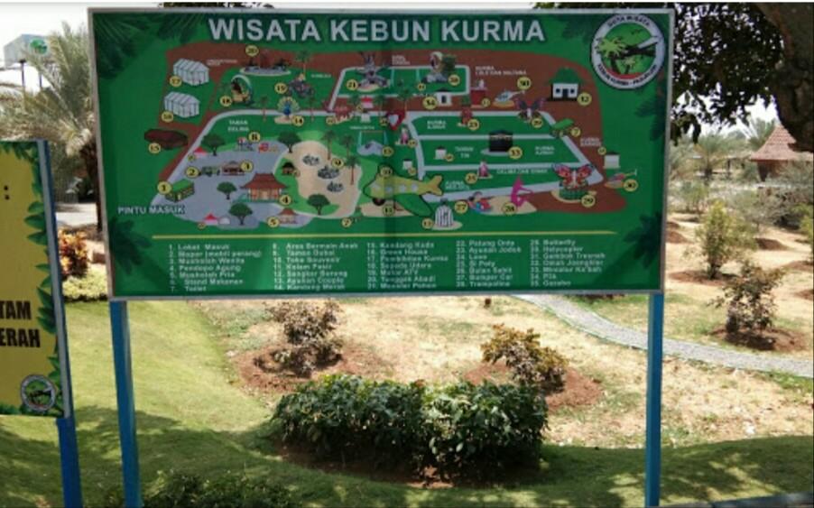 wisata Kebun petik kurma Pasuruan