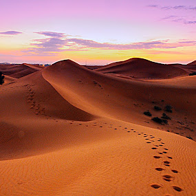 my shoesteps by Jerry Fer Damian - Landscapes Deserts