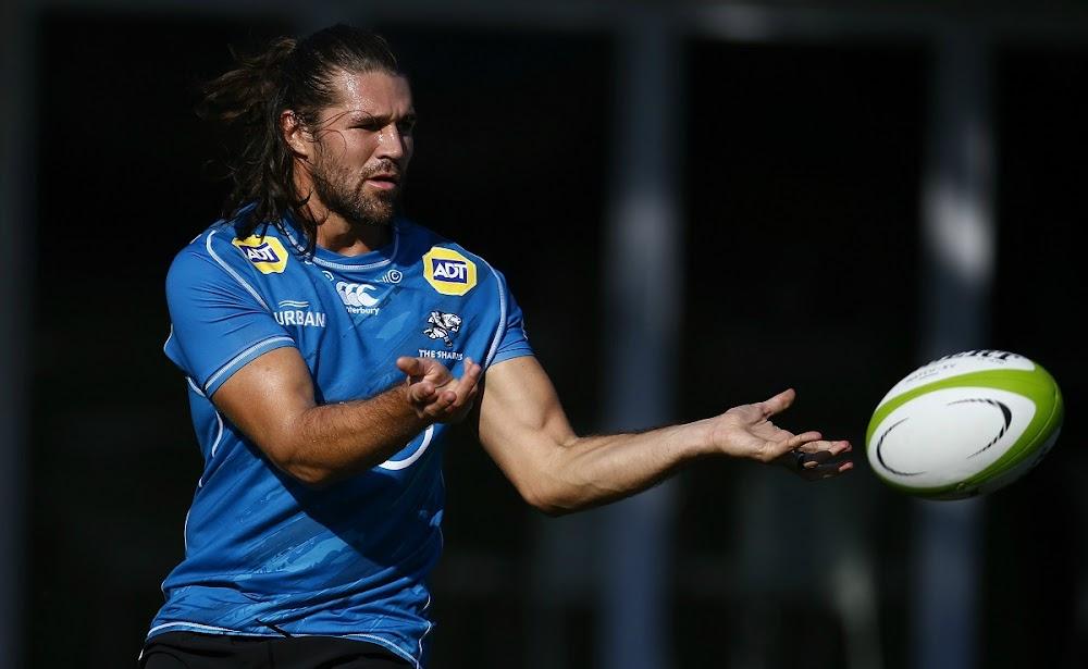 Former Sharks utility back Kobus van Wyk signs for Hurricanes