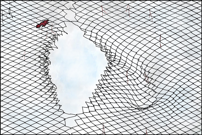 Ungheria ( dentro o fuori ? ) di D. Costantini