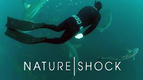 Nature Shock thumbnail