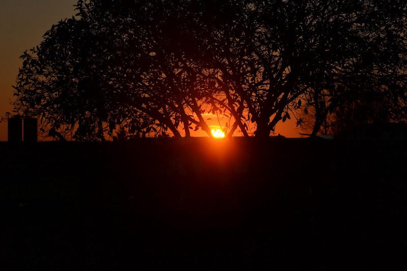 Sundown di vb63