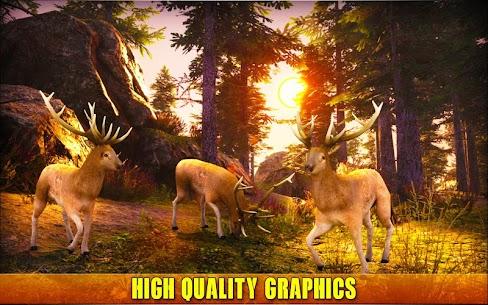 Deer Hunting 19 3