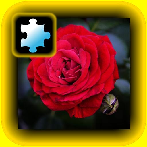 Jigsaw Puzzle VIP: Flower