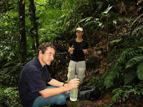 Photo: Ökologisches Reservat Juatinga - http://www.brazadv.de/brasilien/juatinga.htm - Rio de Janeiro - Brasilien