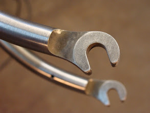 Photo: Stainless dropouts blending smoothly into the blades.