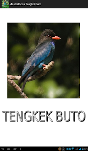 Master Kicau Tengkek Buto - náhled