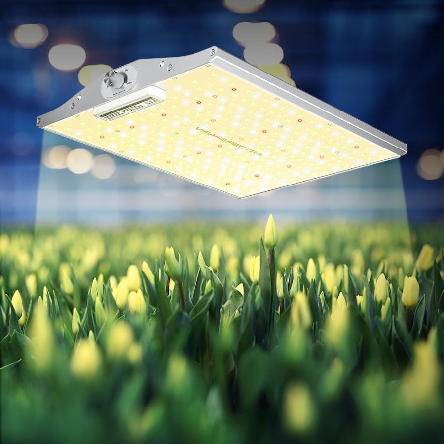 ViparSpectra XS Series LED Grow Lights Boost Yields for Indoor Growers