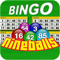 Nine Balls Video Bingo icon