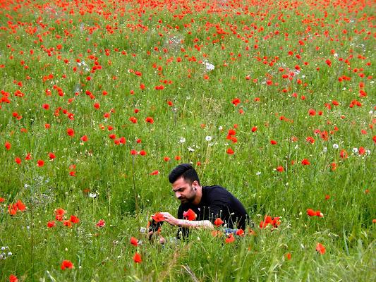"""Fotografo ... """"in erba"""" di Rodema"""