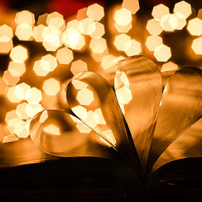 Future Light by Fitria Ramli - Artistic Objects Still Life ( reading, color, still life, art, book, artistic, object, education, light, bokeh, Books, Still life, Pages, Business, school, , night, lights )