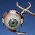 EON 3D Human Eye icon