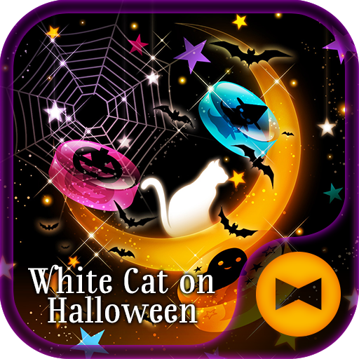 White Cat on Halloween Theme