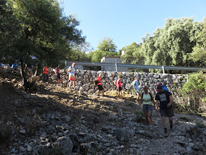 Photo: Rodeando los campos de Escorca