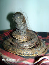 Photo: Kora-kora, Jenglot atau biasa disebut Batara Karang, jenis kelamin jantan, badan bagian bawah berupa ular, tinggi 10 cm dilihat dari samping kiri. http://nurkasim49.blogspot.it
