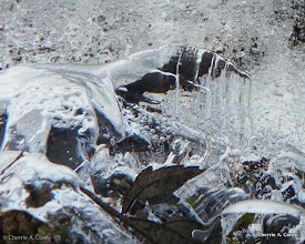 Photo: Marvels inside an ice sheet