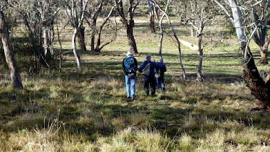 Photo: Guys walking down through Canberra House Woodland