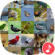 Appp.io - New Zealand Bird Sounds