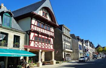 terrain à Guémené-sur-Scorff (56)