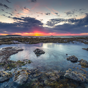Ebb and Flow by Nicole Rix - Landscapes Waterscapes ( reef, sunrise, seascape, rocks, waterscape, clouds )