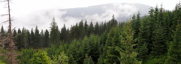 Photo: Tutaj już widok na Masyw Śnieżnika, na przełęczy postanowiłem, że jadę przez Żmijowiec na Czarną Górę.