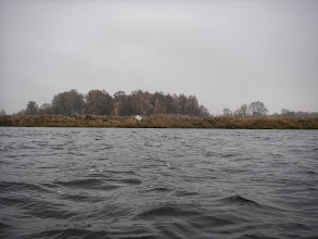 Photo: Troszkę faluje