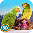 City Bird Parrot Simulator 3D icon