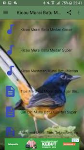 Download Kicau Murai Batu Medan Juara For PC Windows and Mac apk screenshot 2