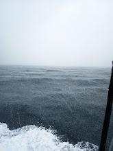 Photo: 雨がジャジャ降り!