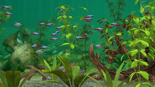 Fish Farm 3 – 3D Aquarium Simulator 5