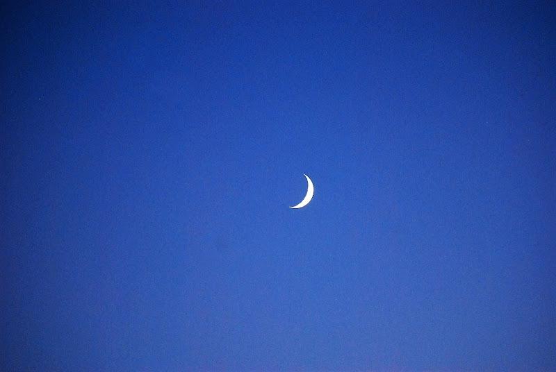 Spicchio di luna di kolosso