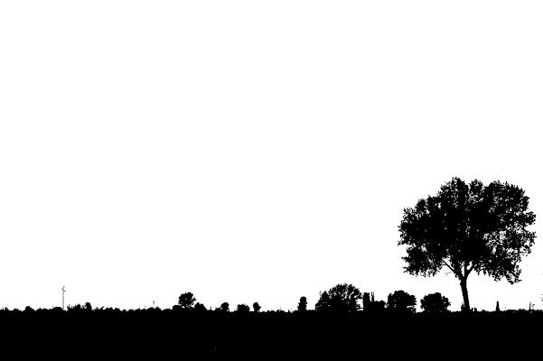 Black and white di Senide Ph
