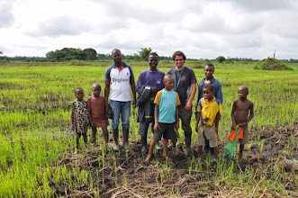 Photo: Emiliano checks on newly seeded rice field of WARC operation with local farmers. [Photo by Erika Styger, July 2012]