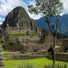 Machu Picchu by Hezi Shohat - City,  Street & Park  Historic Districts ( peru, d7100, machu picchu, nikon, cusco )