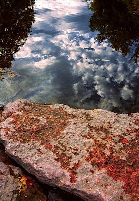 Sky or embankment? di Giulia Breda