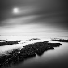 Photo: Fitzgerald Marine Reserve 1