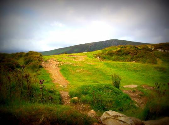 Irish path di marty270705