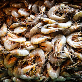 Fresh Shrimp  by Mohd Nazeerul - Animals Other ( crustaceans, udang, decapod, jerudong, fresh food, brunei, pasar )
