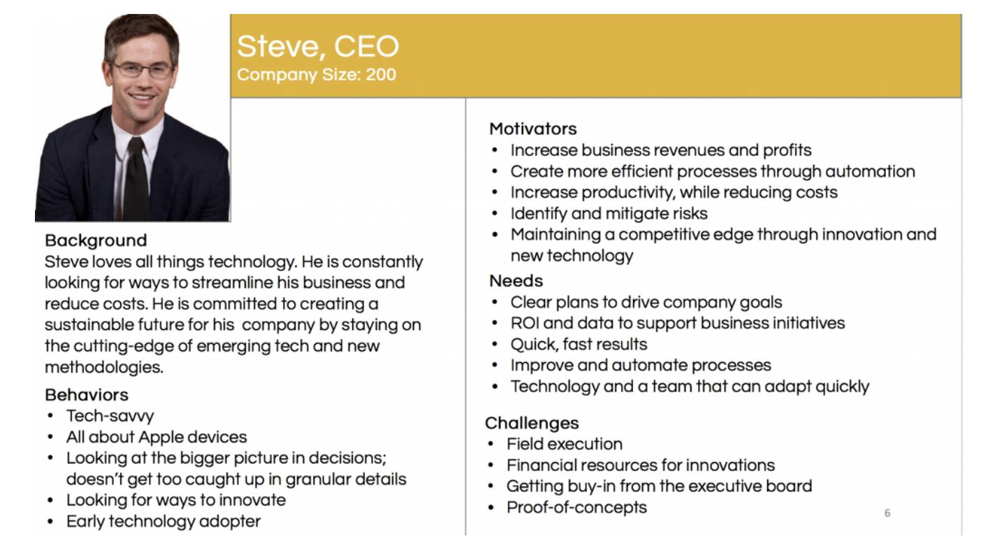 CJM CEO persona profile example for B2B