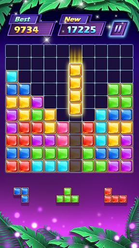 Block Puzzle 1.2.9 screenshots 2