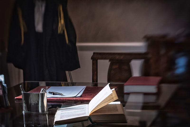 Avvocato: pianista della parola di avocado
