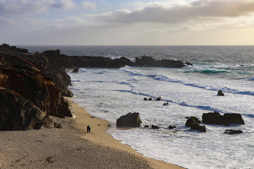 Point Lobos & Calla Lily Valley: Two spots you must visit in Highway 1