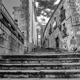 stairs by Phoenix One - Black & White Buildings & Architecture