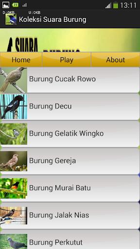 Koleksi Suara Burung