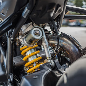 by Gavin Pouquette - Transportation Motorcycles ( speed, motorcycle, ducati, suspension, fast )