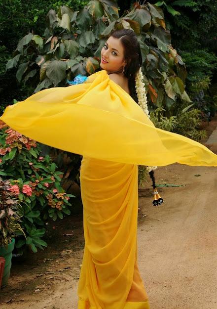 Sana Oberoi biography, Sana Oberoi saree, Sana Oberoi profile